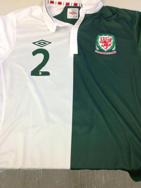 Camiseta de Gales blanca y verde